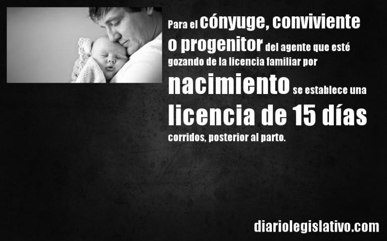 licencias familiares 7